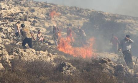 Palestinier och en följeslagare försöker släcka en gräs- och trädbrand.