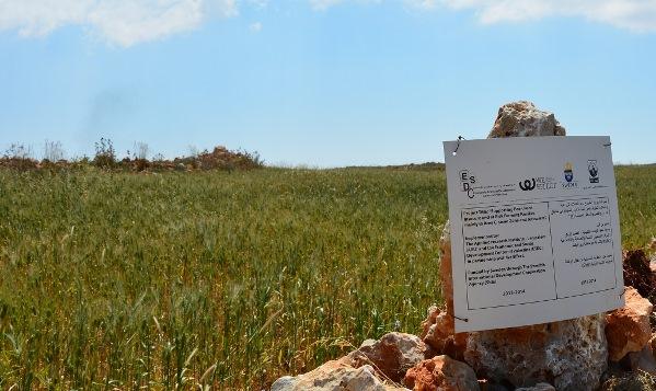 Sida-finansierad markberedning för bruk av åker. Muren skylten sitter på är stenar från den rensade åkern.