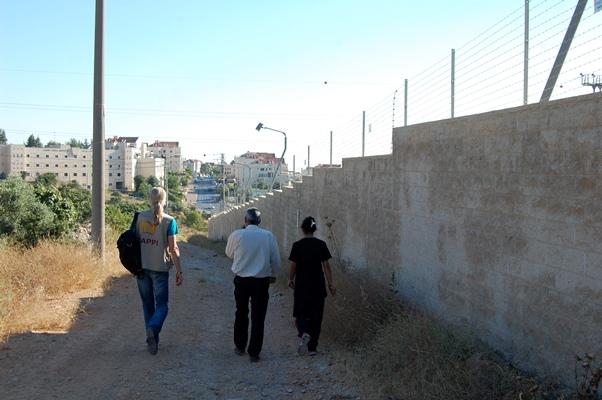 Följeslagare, Khaled och hans barnbarn på väg till den brända olivodlingen.