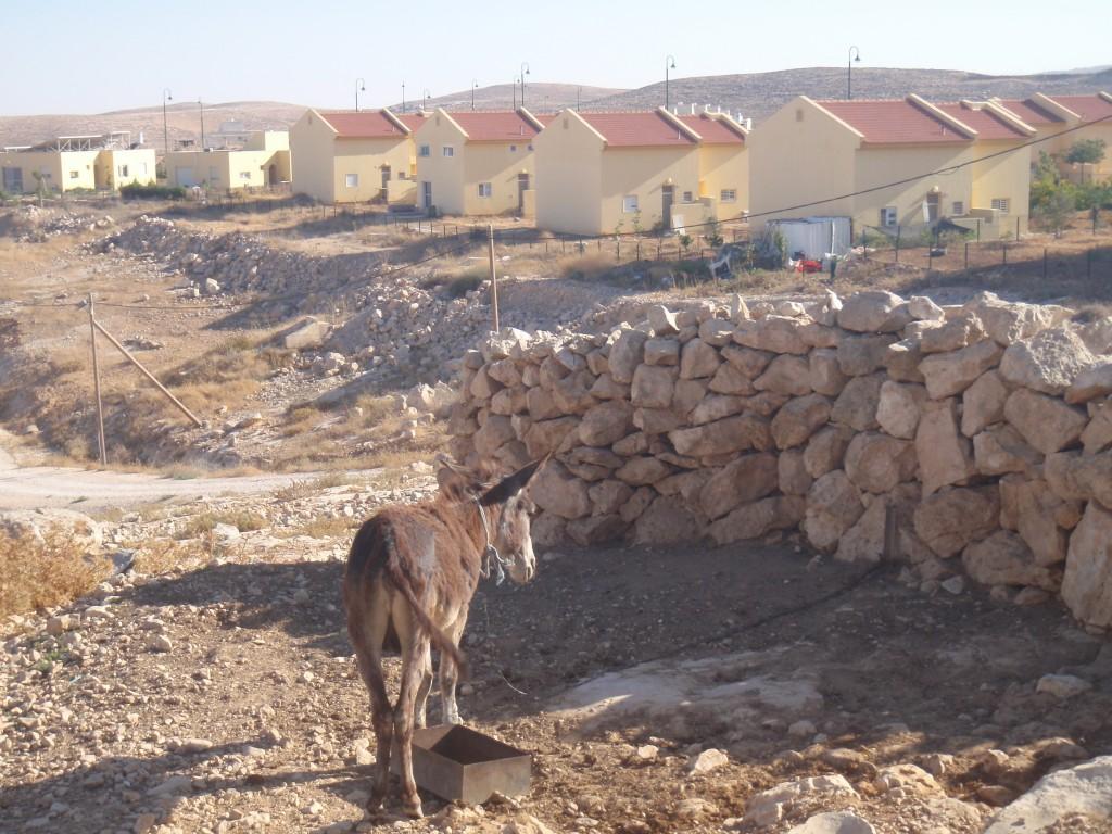 I förgrunden syns beduinbyn um al-Kher och bakom står den israeliska bosättningen Karmels raka rader av hus.