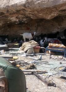 De få ägodelar som familjen kunnat rädda och deras djur i az-Zayyem.