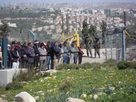 Bönderna i Beit Ijza ber framför den jordbruksgrind som vaktas av soldater och som sällan öppnas så att de kan gå till sina odlingar.