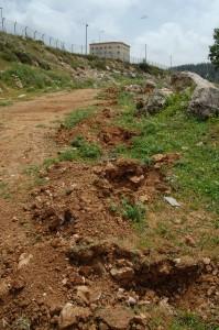 Migdal Oz bosättning, innanför stängslet i sluttningen till vänster i bilden, försöker flytta detta stängsel för att ta över de palestinska böndernas väg. De grävda groparna för stängselstolpar på höger sida av vägen visar vart bosättningen avser att flytta stängslet.