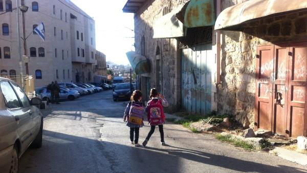 En lugn morgon då två palestinska flickor är på väg till skolan på den omstridda 'Shuhada street' i centrala Hebron. Området är under israelisk kontroll med militärnärvaro under dygnets alla timmar och vi följeslagare finns på plats i syfte att ge barnen en tryggare väg till skolan. [1]