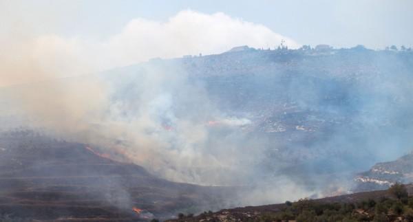 Elden härjar bland olivträden. Ovanför ligger Yizhar-bosättningen, ökänd för att ha gett upphov till så kallade 'price tag'-attacker. Foto: Erik Svanberg.