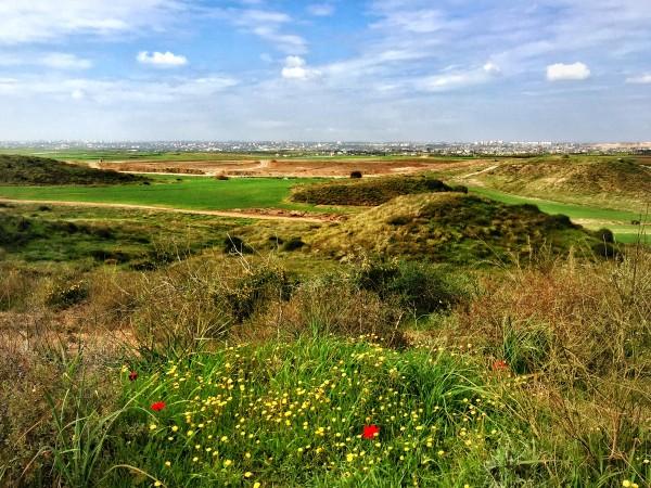 Vy från utkanten av Sderot mot Gaza city. Hela det gröna området är bufferzon mellan Israel och Gaza. En av kullarna i bild är konstgjord och innehåller ett obemannat vaktorn med en kulspruta riktad mot Gaza. Foto: Mayara de Carvalho