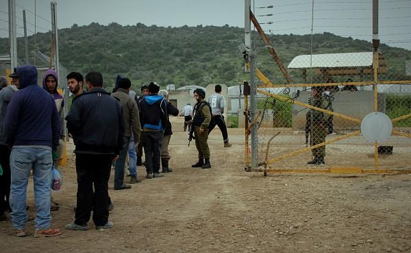Bönder står i kö för att visa upp sina tillstånd för den israeliska soldaten vid grinden i Deir al-Ghusun. Foto: A Dunne.