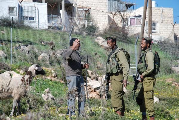 Abdel Karim Jabari försöker övertyga soldaterna att han har tillstånd för bete på marken. Foto: Karl-Göran Sundvall