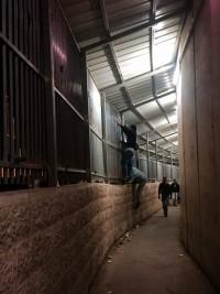 Palestinier klättrar längs gallret för att komma snabbare fram till vändkorset. Foto: Petra Ludwig