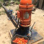 Utan vatten – inga tomater. Här syns den livsviktiga pumpen på familjens gård och det fysiska resultatet av den.