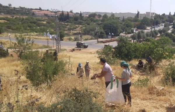 Familjen Jabari, som får hjälp av bland annat EAPPI, övervakas av israelisk militär och polis under veteskörden. I bakgrunden bosättningen Kiryat Arba. Foto: Daniel Romero