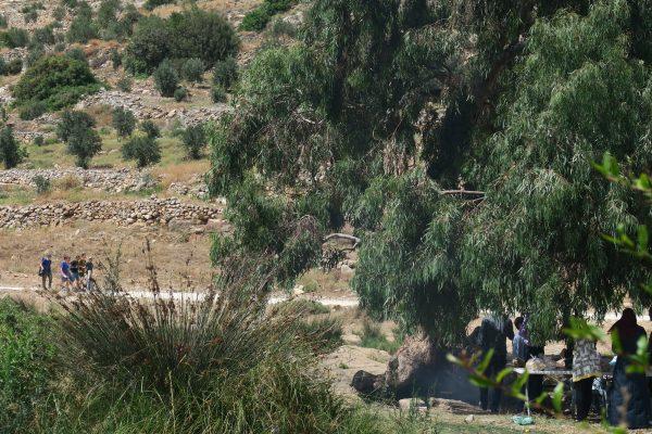 Under träden i Wadi Qana äter en grupp kvinnor picknick. På vägen kommer ungdomar från någon av de intilliggande israeliska bosättningarna. Foto: Erika Karlsson