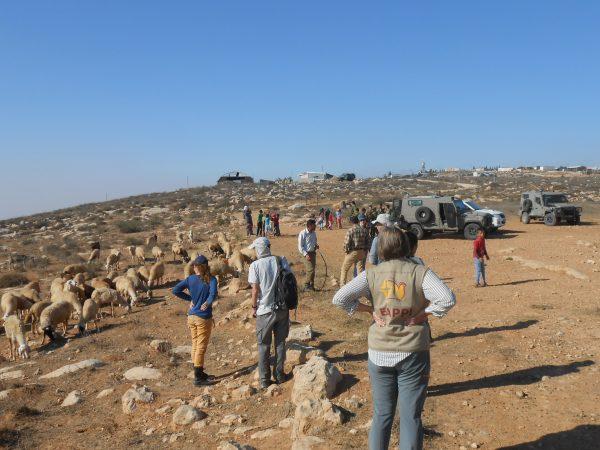 """""""Land-Action"""" med deltagare ur organisationen Ta'ayush utanför bosättningen Mitzpe Yair som syns i bakgrunden. Foto: Liz B-H"""