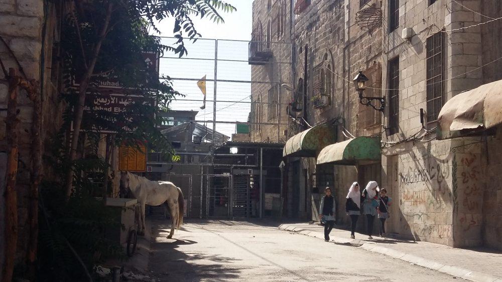 Checkpoint 56 som skiljer H1 från H2-området och den vägspärr som endast palestinier som bor, eller går i skolan i Tel Rumeida får passera. Vi följeslagare har även ibland sett en palestinsk man utnyttja denna folktomma plats till att utfodra sin häst.